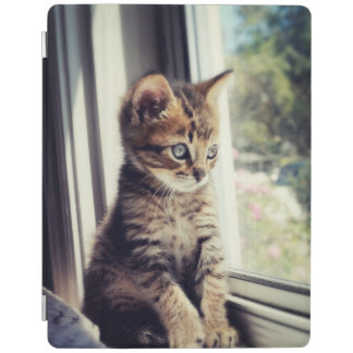 Tabby Kitten Watching Out Window iPad Cover