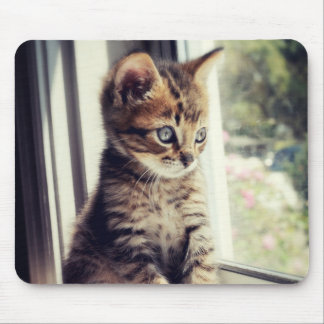 Tabby Kitten Watching Out Window Mouse Mat