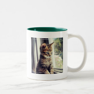 Tabby Kitten Watching Out Window Two-Tone Coffee Mug