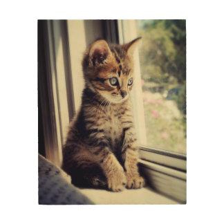 Tabby Kitten Watching Wood Wall Decor