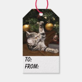 Tabby kitty cat Christmas Gift Tags