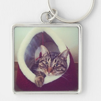 Tabby Kitty In Hut Close-Up Photograph Key Ring