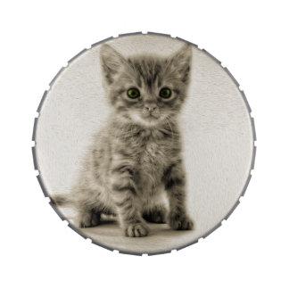 Tabby Kitty Jelly Belly Tin