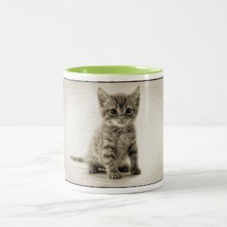 Tabby Kitty Two-Tone Coffee Mug