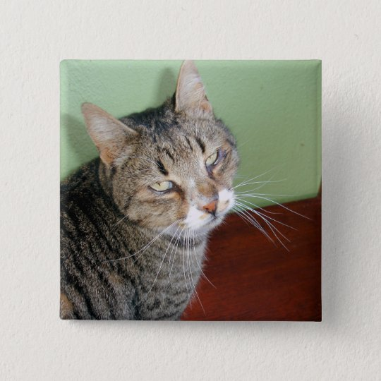 Tabby Time 15 Cm Square Badge