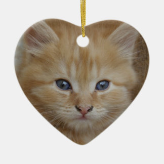 Tabby Tomcat Kitten Christmas Ornament