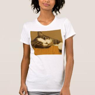 Tabby Shirts