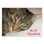 Tabby Valentine Cards
