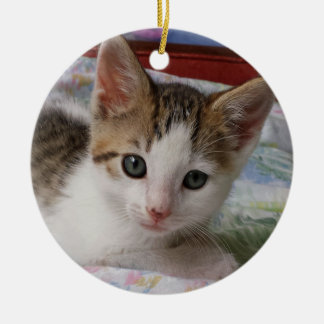 Tabby & White Kitten Ornament