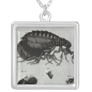 Table IV of Flies and Fleas Silver Plated Necklace