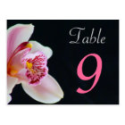 Table Number Card Orchid