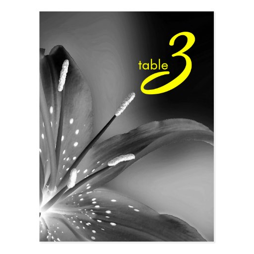 table number card postcard