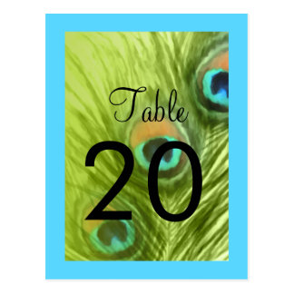 Table Number Turquoise Blue and Lime Peacock Postcard