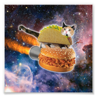 taco cat and rocket hamburger in the universe photo art