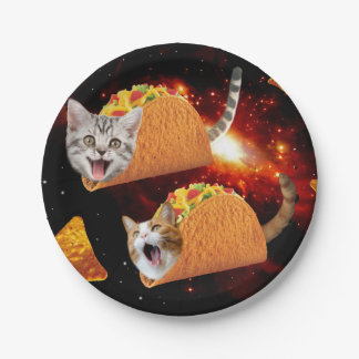 Taco Cats Space Paper Plate