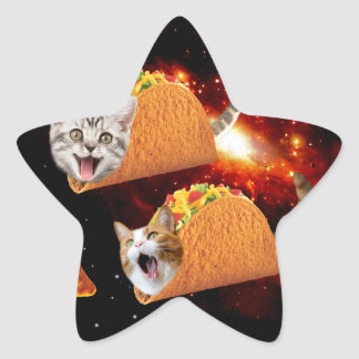 Taco Cats Space Star Sticker