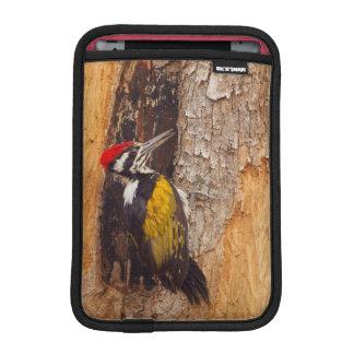 Tadoba Andheri Tiger Reserve 2 iPad Mini Sleeves