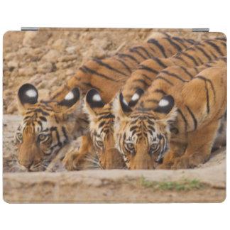 Tadoba Andheri Tiger Reserve iPad Cover