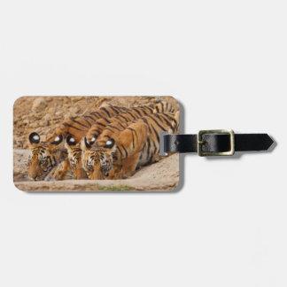 Tadoba Andheri Tiger Reserve Luggage Tag