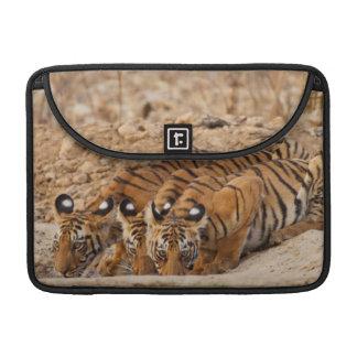 Tadoba Andheri Tiger Reserve Sleeves For MacBook Pro