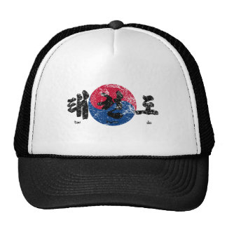 Tae Kwon Do Flag back Distressed Cap