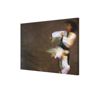 Tae Kwon Do Leap Kick Canvas Print
