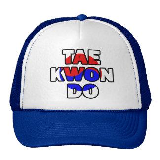 Taekwondo 006 cap