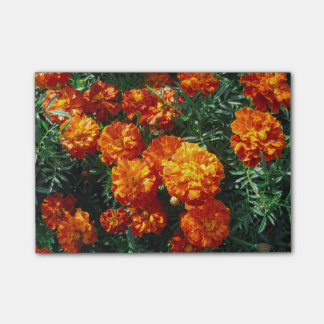 Tagetes Post-it Notes