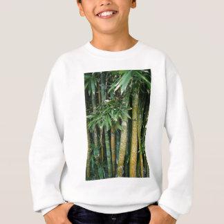 Tags on tree's sweatshirt