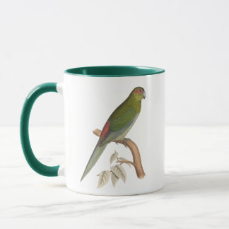 Tahiti Parakeet Illustration, c. 1849 Mug