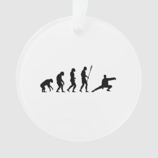 tai chi evolution