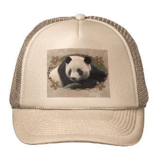 TAI SHAN CAP