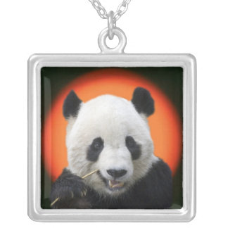 TAI SHAN SILVER PLATED NECKLACE