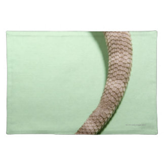 Tail of bearded dragon placemats