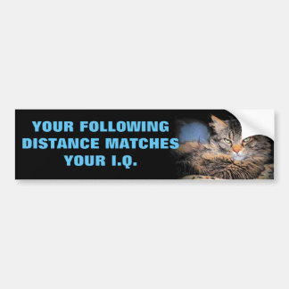 Tailgaters IQ? Same as Following Distance CAT Meme Bumper Sticker