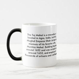 Taj Mahal, History of Coffee Mug
