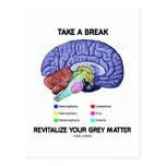 Take A Break Revitalise Your Grey Matter (Brain) Postcard