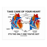 Take Care Of Your Heart It's Only One You've Got Postcard