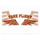 Take Flight Aviation Wings