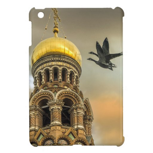 Take me to the Golden Domes iPad Mini Cases