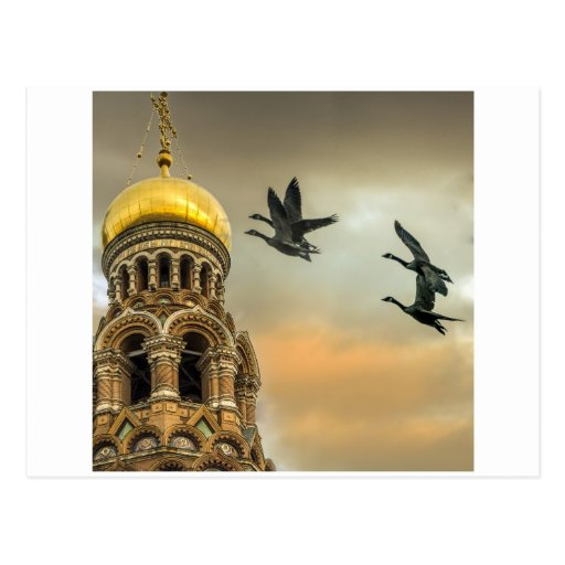 Take me to the Golden Domes Postcards