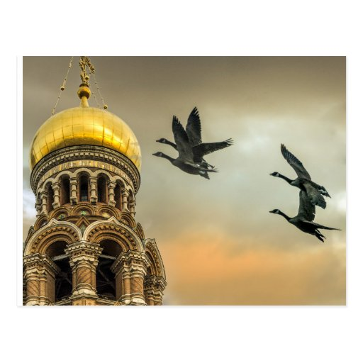 Take me to the Golden Domes Post Card