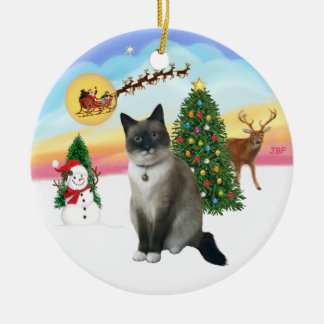 Take Off - Snow Shoe Cat Christmas Ornament