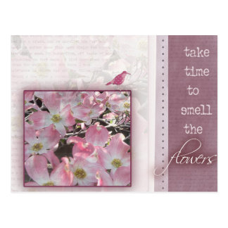 Take time to smell the flowers postcards