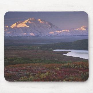 Taken in early September in Denali National Park Mouse Pad