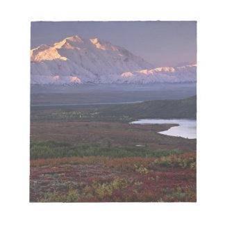Taken in early September in Denali National Park Notepad