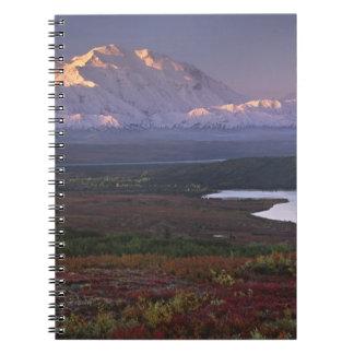 Taken in early September in Denali National Park Spiral Notebooks
