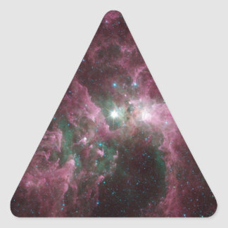 Taken Under the 'Wing' of the Small Magellanic Clo Triangle Sticker