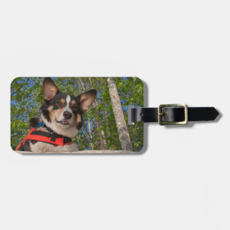 Taking a Break Luggage Tag