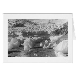 Taku Glacier Alaska 1914 Card